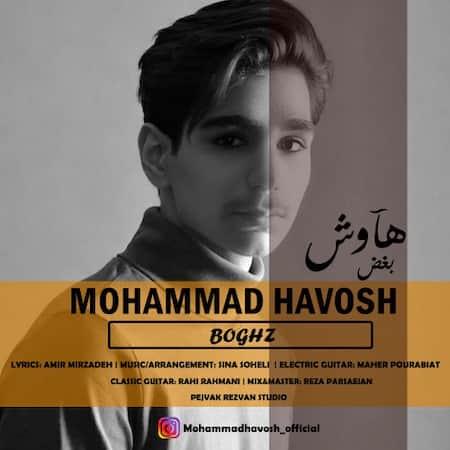 آهنگ محمد هاوش بغض