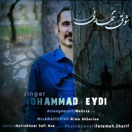آهنگ محمد عیدی شوق تنهایی